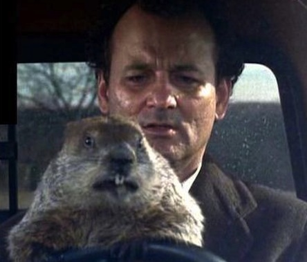 groundhog-day-movie-bill-murray-driving